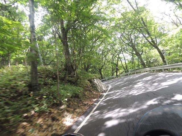 中山道りさN6376.jpg